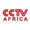 Una progresión natural: el crecimiento chino en el sector audiovisual africano
