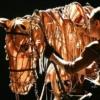 Un Caballo de Guerra cabalga hacia Sudáfrica