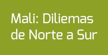 Mali: Dilemas Norte a Sur