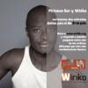 ¡Vente con Wiriko al Festival Pirineos Sur 2015! (IV)