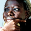 """""""El baobab que enloqueció"""": Exilio, identidad y experiencias de supervivencia de una mujer africana en Europa"""