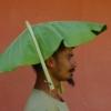 Territorios: artistas afrodescendientes en la colección de la Pinacoteca de Sao Paulo