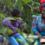Orígenes y descendientes, un retrato de la diversidad étnica de Guinea Ecuatorial