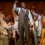 ¡Puños arriba!, llega la ópera tributo a Nelson Mandela